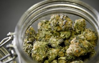 Things To Remember In Buying Marijuana Products Online