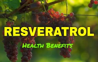 5 Health Benefits You Can Acquire from Resveratrol